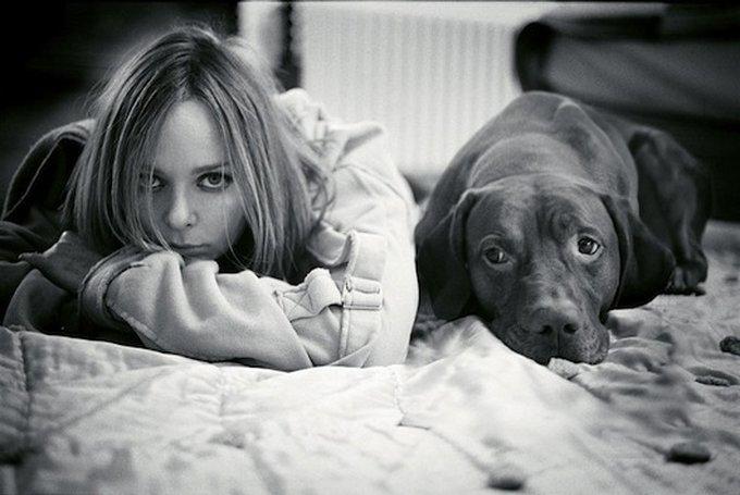 Kubrick, le chien aux 1000 et 1 photos.