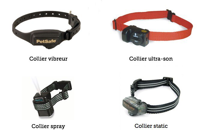 Colliers anti-aboiement pour chien