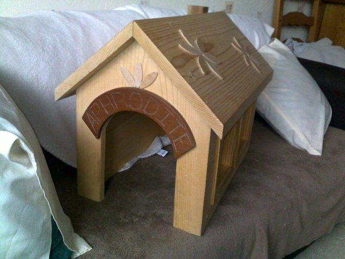 Rencontre avec Pet's Wood, des meubles maison pour vos animaux !