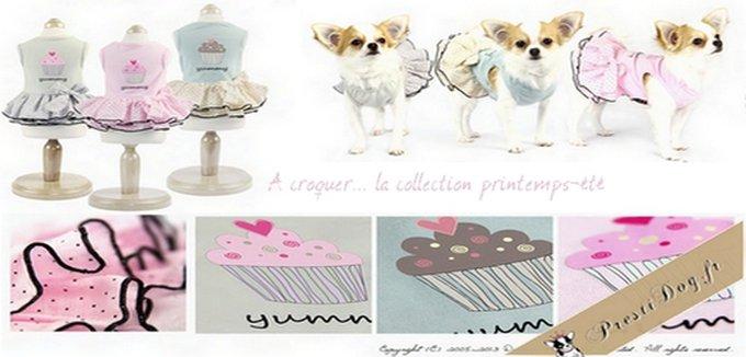 Rencontre avec Prestidog, la marque pour petit chien qui va faire des jaloux !