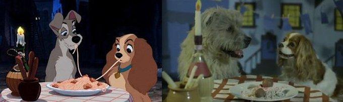 Les stars de Disney existent en vrai !
