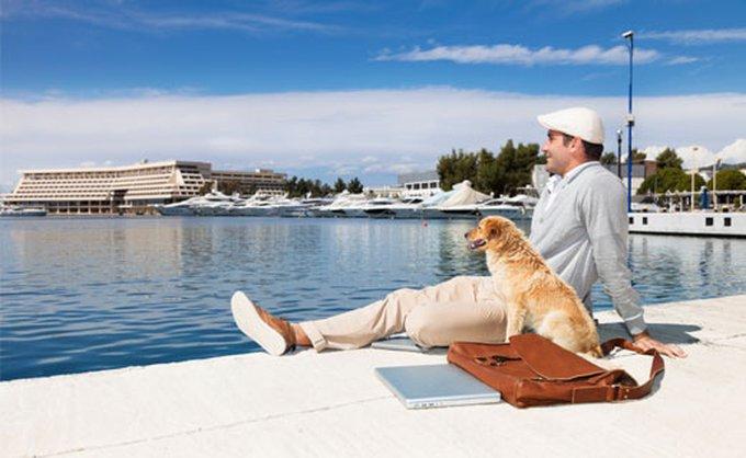 pet-vacation