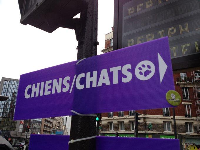 Découvrez Yummypets au salon Chiens et Chats !