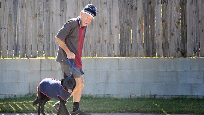 L'histoire d'un homme qui a parcouru 300 km pour retrouver son chien !