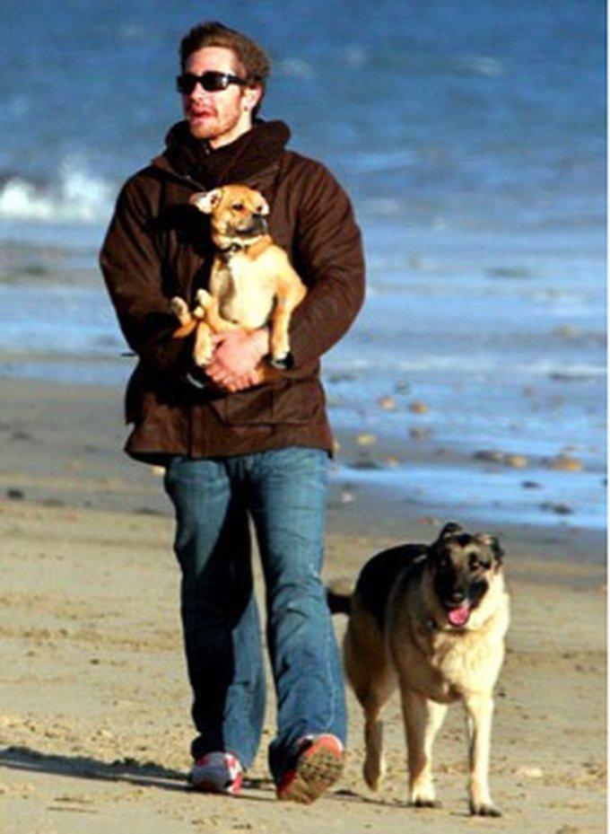 8. Boo & Atticus (Jake Gylenhaal)