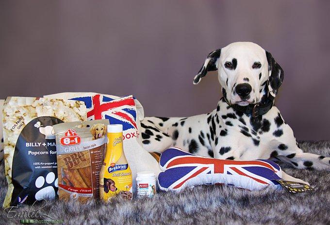 Profitez de l'offre Yummypets - DoggyBox !