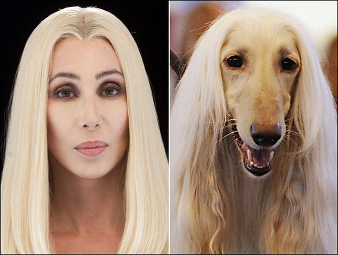gal-look-a-likes-cher