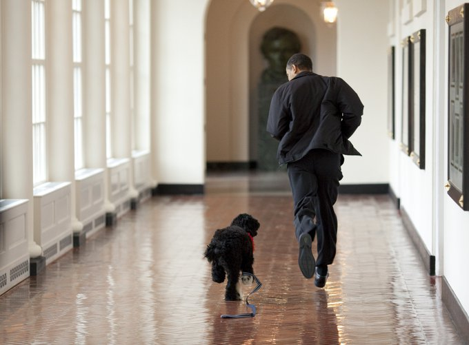 Obama family welcomes new puppy. (White House photo by Pete Souza)