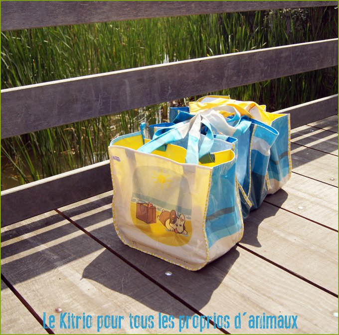 Le kit indispensable pour votre été avec Toutou !