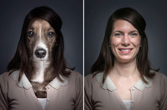 Underdogs : des photos qui mettent en avant la ressemblance homme / chien