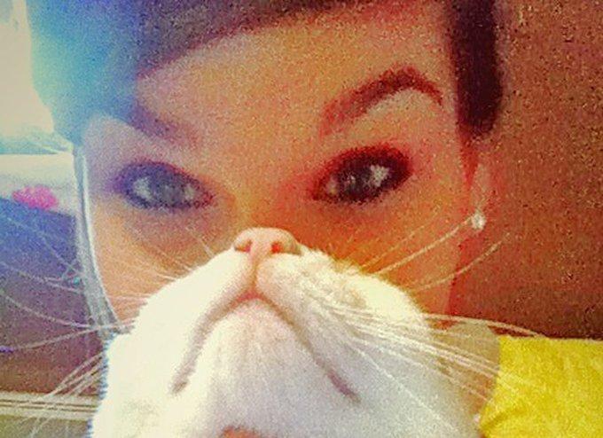 CatBeard / CatFro Yummypets !