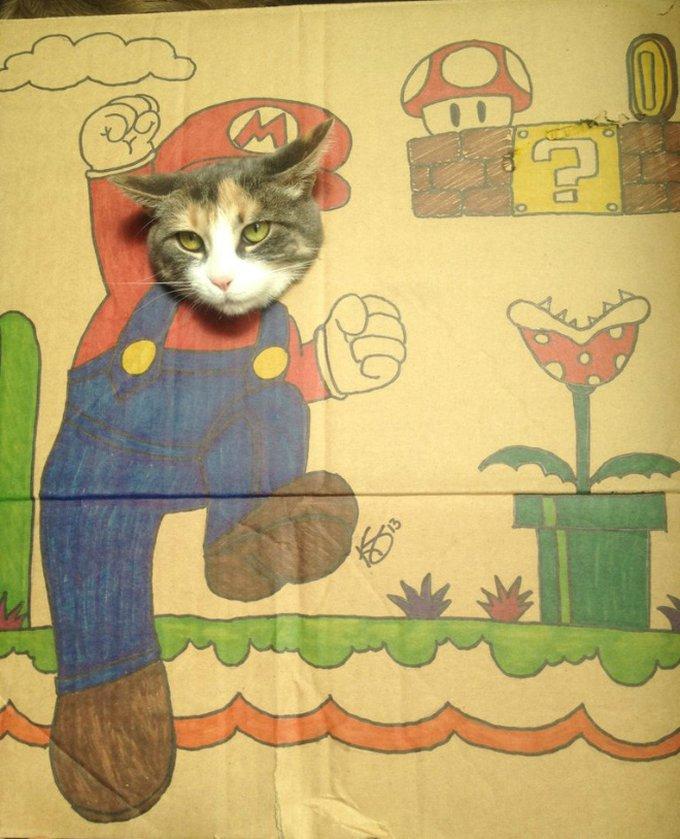 chats-cartons-11
