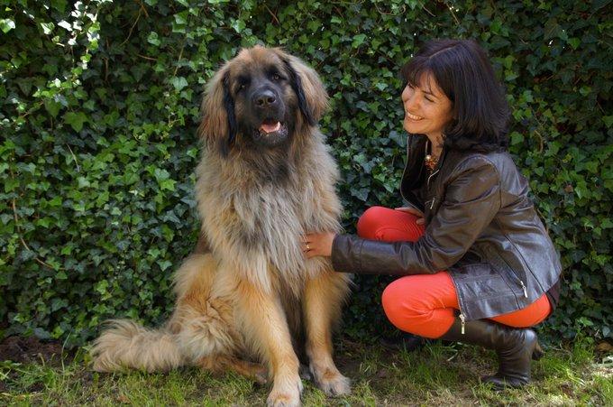 Rencontre avec Vox Animae, tout pour rendre heureux votre animal