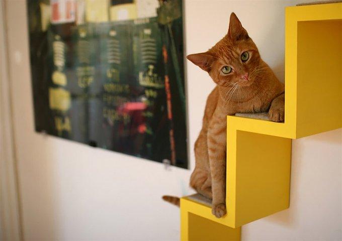 the-kittyloft04