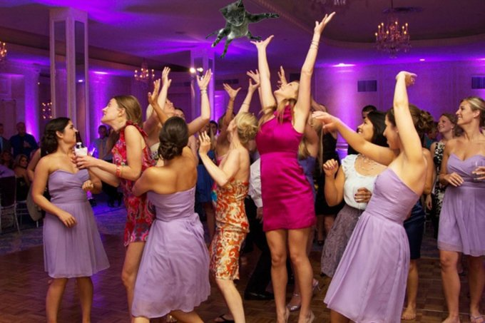 Brides-Throwing-Cats-9