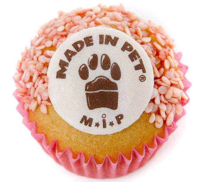 Rencontre avec Made In Pet, des cupcakes pour chiens !