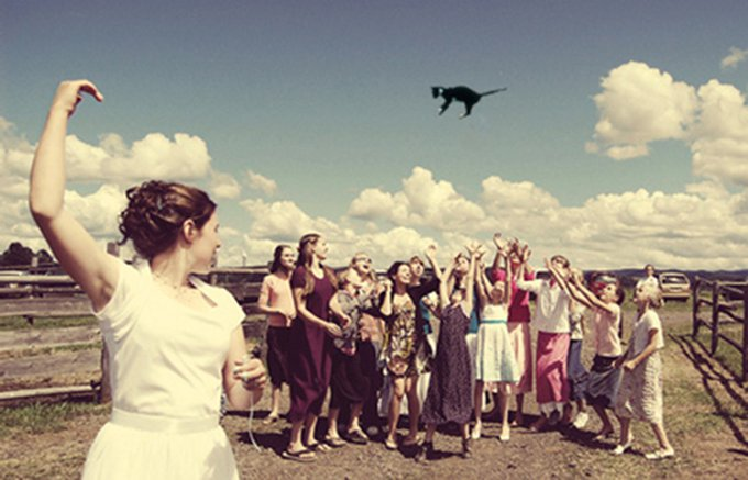 brides_throwing_cats_3