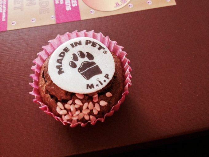Made In Pet les commercialise depuis son site web. De fabrication française, et de qualité supérieure, se sont de délicieux gâteaux que vous offrez à votre animal, et bien-sûr, la recette est validée par des vétérinaires.