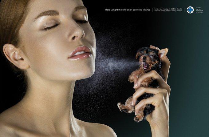 Quelles marques ne testent pas leurs produits sur les animaux ?