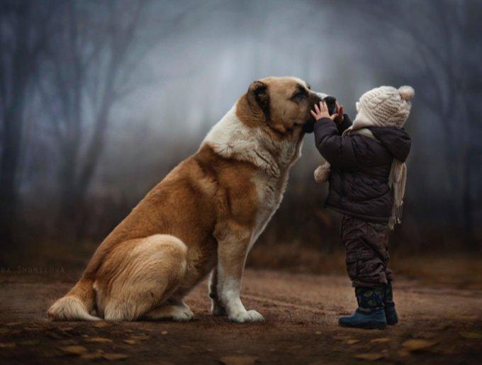 blog_yummypets_animaux_enfants_1