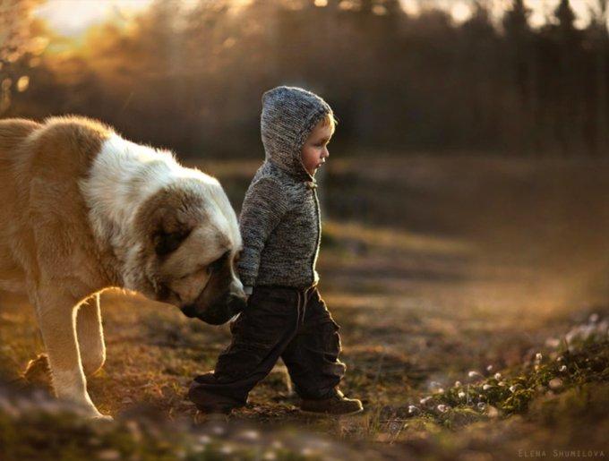 blog_yummypets_animaux_enfants_7
