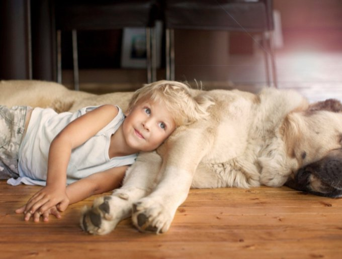 blog_yummypets_animaux_enfants_9