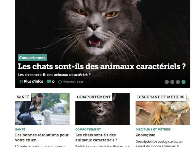 blog_yummypets_article_conseils_01_2014