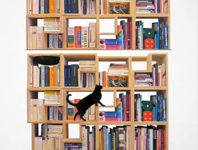 blog_yummypets_librairie_chats_02_14