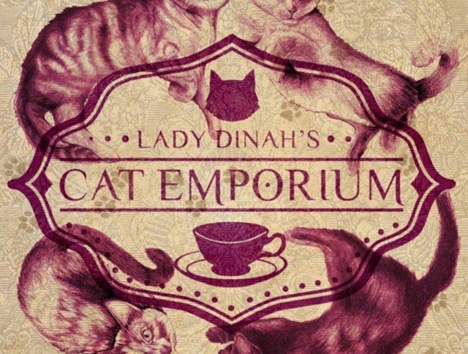 blog_yummypets_cat_cafe5_03_14