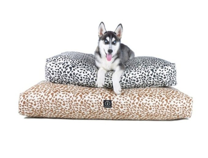 blog_yummypets_pets_coussin16_03_14.jpg