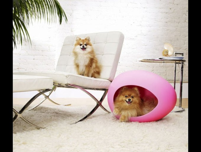 blog_yummypets_pets_coussin17_03_14.jpg