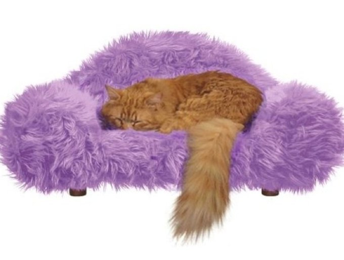 blog_yummypets_pets_coussin4_03_14.jpg