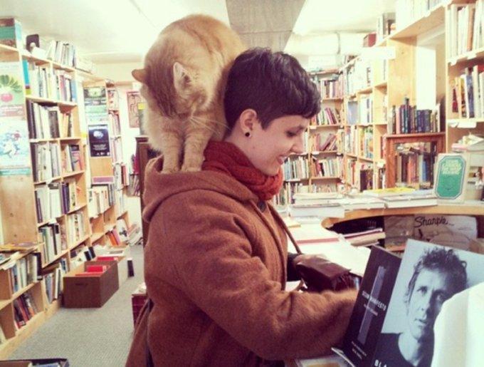 blog_yummypets_chats_bookstore7_04_14