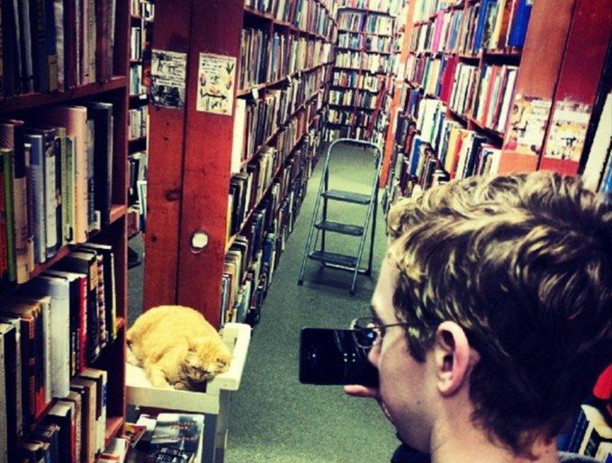blog_yummypets_chats_bookstore9_04_14