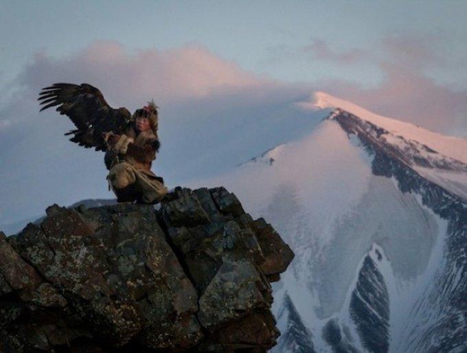 Une belle amitié entre un aigle et un enfant