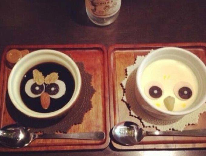 Un café à hiboux
