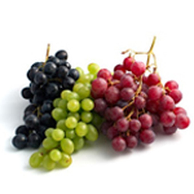 blog_yummypets_grape_05_14