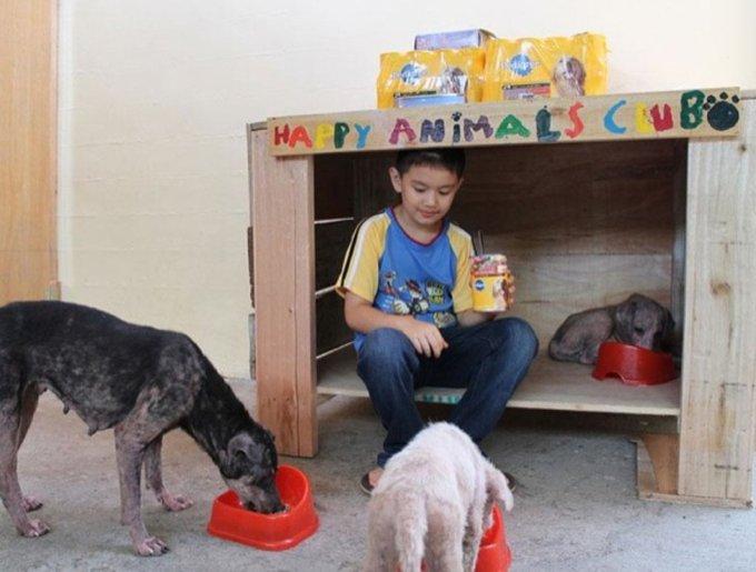 un enfant sauve des animaux