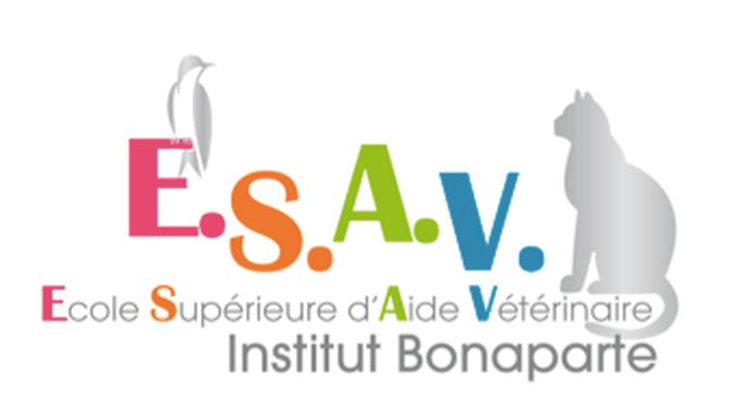 logo de lESAV