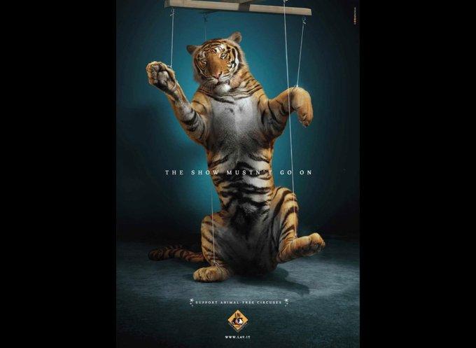 Soutenez les cirques sans animaux / www.lav.it