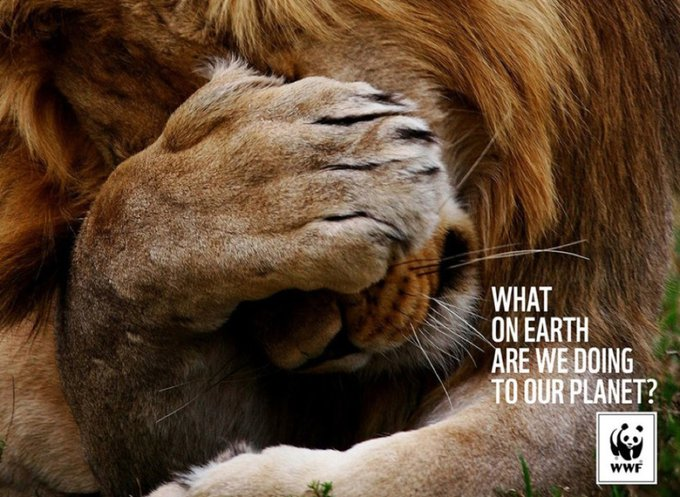 Que sommes-nous en train de faire à notre planète ? / Agence UncleGrey