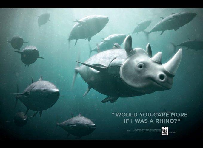 WWF / thon rouge : Feriez-vous plus attention si j'étais un rhinocéros ? / www.wwf.org