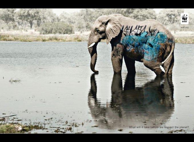 WWF : Combien de temps cela prendra avant que nous respections la planète ? / www.wwf.org