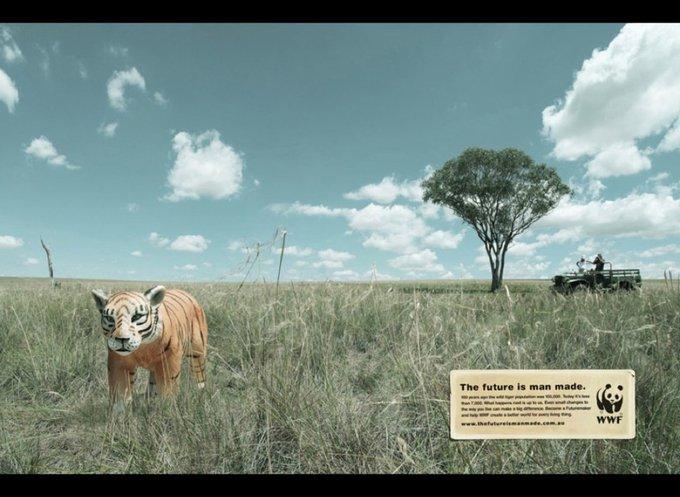 WWF : l'avenir est fabriqué par l'Homme / www.wwf.org