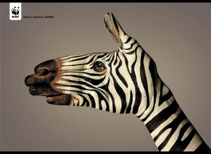 WWF : Donnez un coup de main pour la faune / www.wwf.org