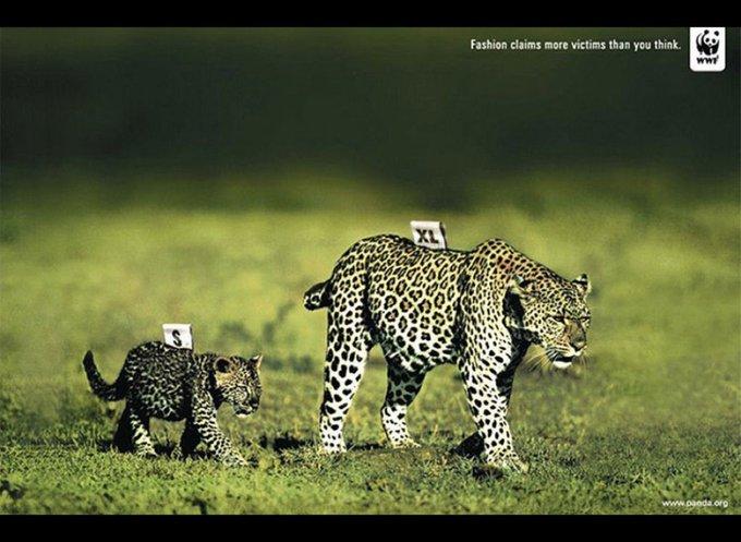 La mode fait plus de victimes que ce que vous ne pensez / www.panda.org