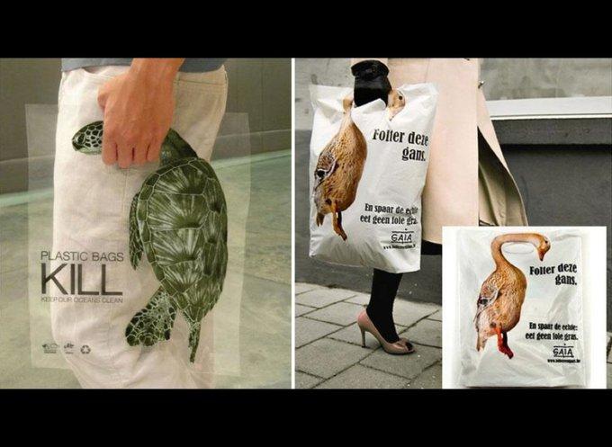 Action mondiale dans l'intérêt des animaux : les sacs plastiques tuent