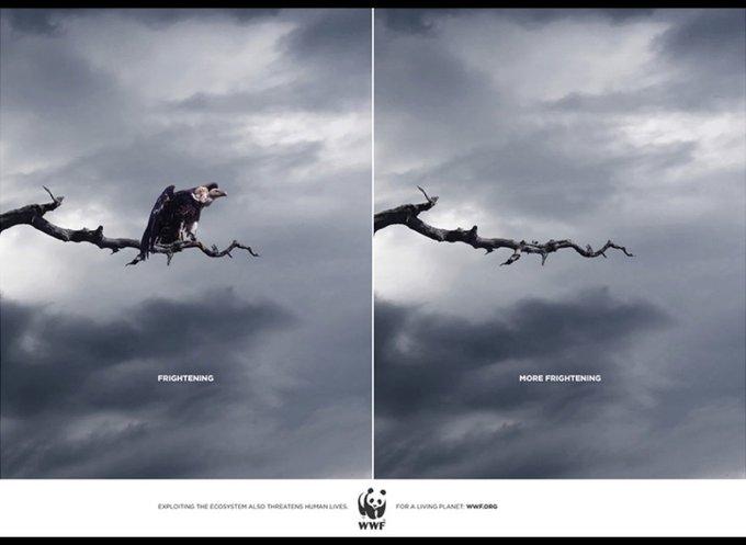 Terrifiant vs. Encore plus terrifiant / www.wwf.org