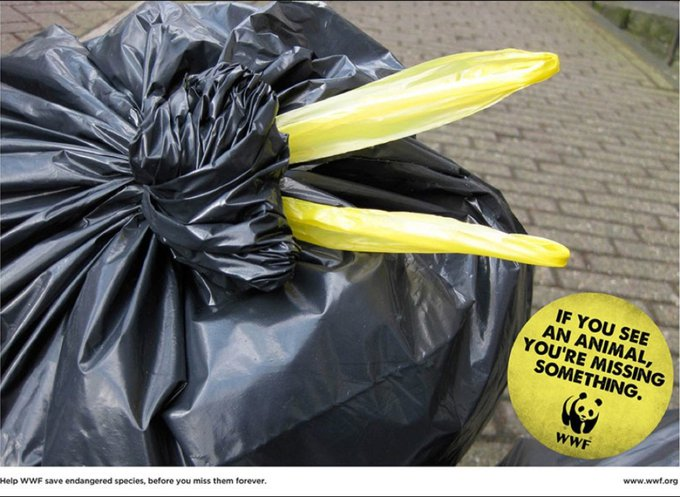 WWF : si vous voyez un animal, vous manquez quelque chose / www.wwf.org