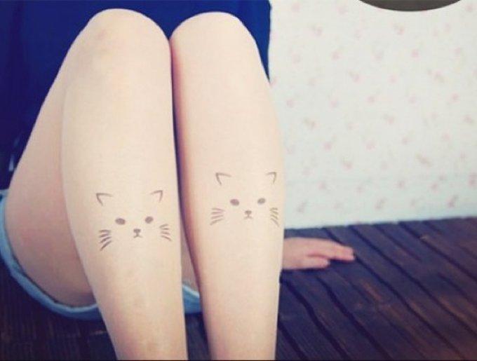 collants chat